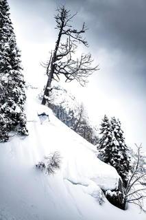 AFP_0668_robert_ski.jpg